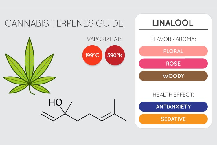 terpenes for pain 4