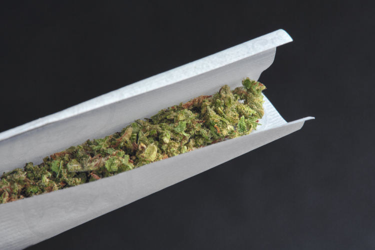 how to roll a joint 1