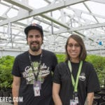 suspended brands tour greenside i502 cannabis