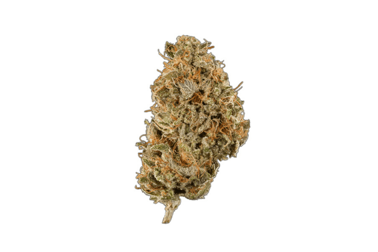 Strains for the Holidays 4